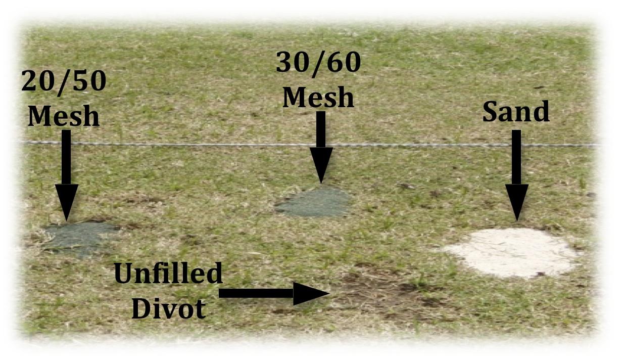 Divot Sand